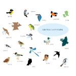 Symbol-Bird